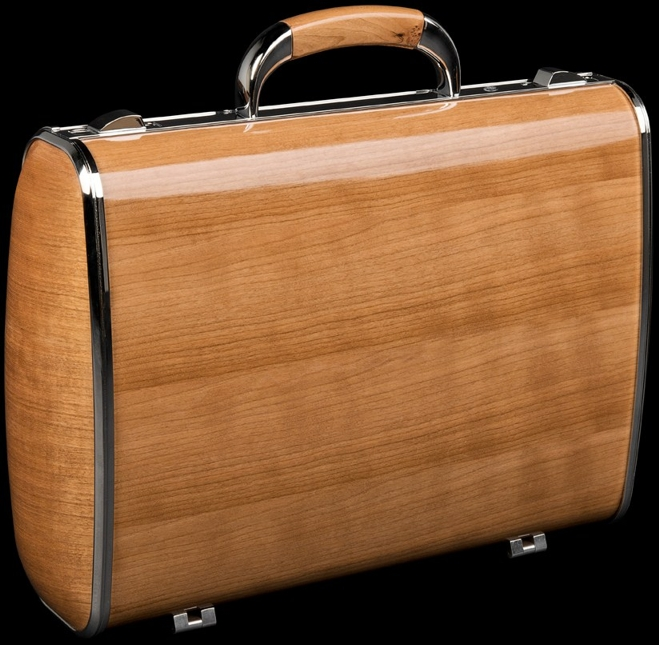 DALBRGIA BRIEFCASE STAND UP